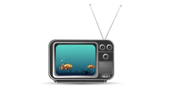 television tlc