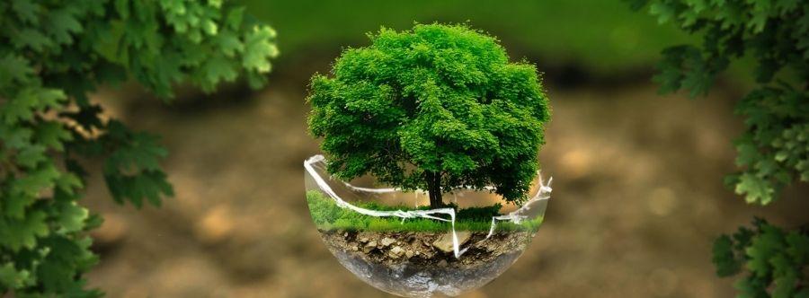 green ambiente telex